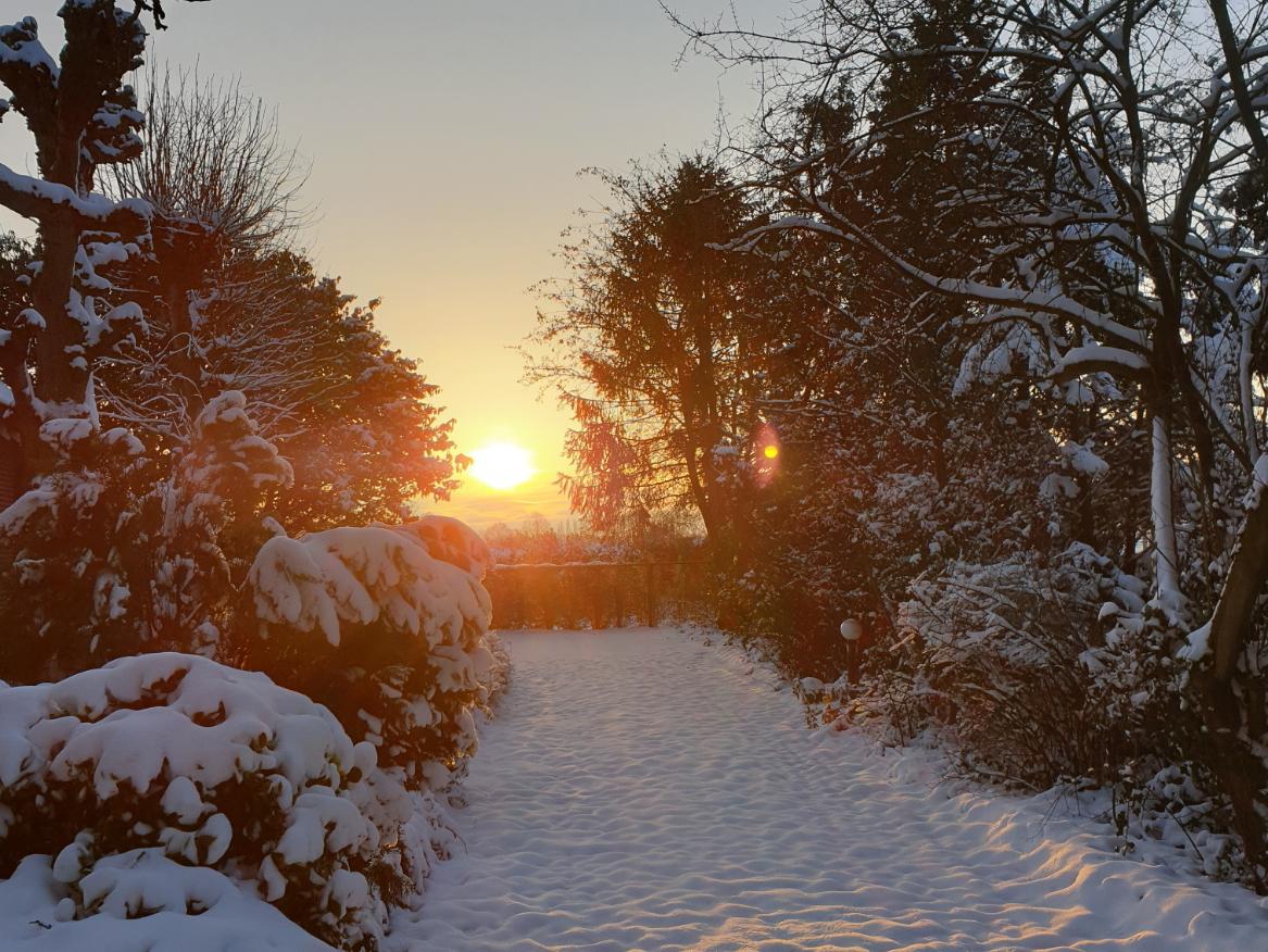zonsopkomst-sneeuw